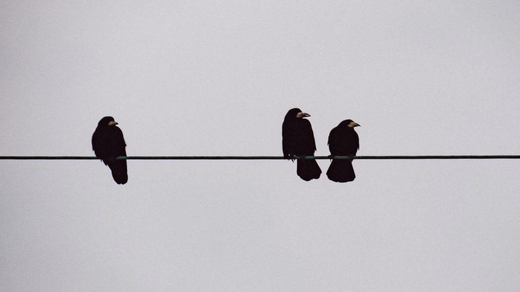 ローソク足の三羽烏の解説